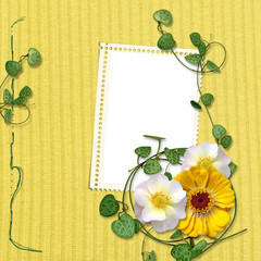 Knitted background with stamp-frames and flowers