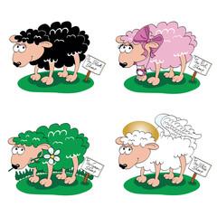 Pecore colorate