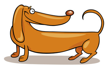 Dachshund Dog smiling