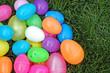 Bright Eggs - 13423806