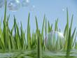 Seifenblasen, Wasser und Gras