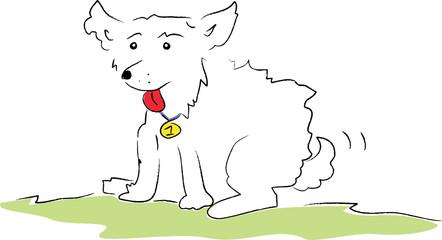 Weisser Hund