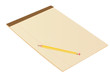 Brown Blank Notepad with Pencil