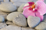 Fototapety Orchidee und Steinherzen