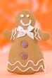 Gingerbread Lady