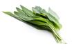 Grüne frische Bärlauchblätter nebeneinander