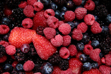 wild berries,making jam