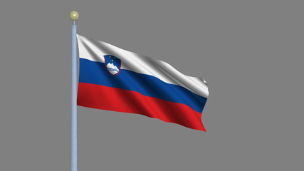 Flag of Slovenia with alpha matte for easy isolation