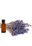 Lavender Healing Herb poster