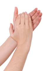 Hands applauding isolated on a white background.