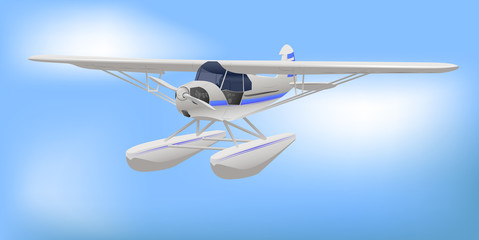 Small White Light Aircraft