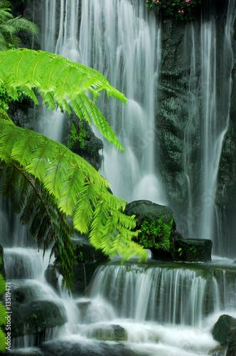 Garden waterfalls - 13519471