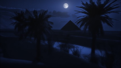 Sahara Moonlight Dunes Oasis Palms and Pyramid (1073)