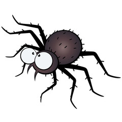 spinne cartoon comic