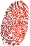 gradient fingerprint