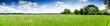 Leinwanddruck Bild - prairie camarguaise
