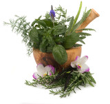 Fototapety Herbal Therapy