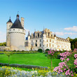 romantic Chenonceau castle