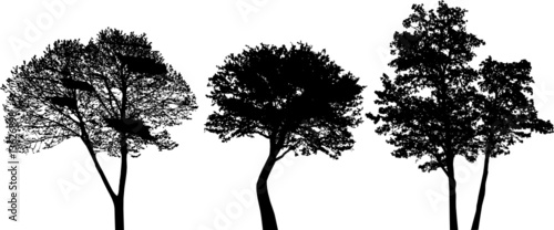 trees - vector set