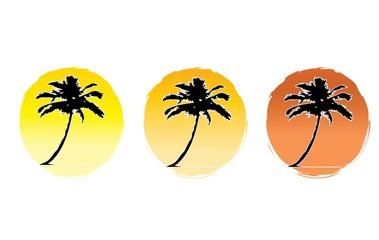 palm tree three