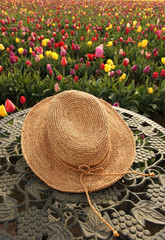 Straw hat in tulip flower field