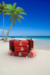 plage valise rouge