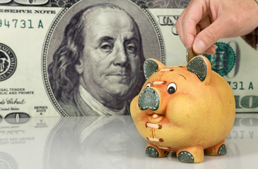 Piggy bank  on big dollar background