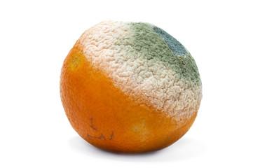 naranja podrida
