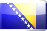 Flag of Bosnia Hertzigovina button poster
