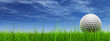 conceptual 3D golf ball on green grass over a blue sky - 13697641