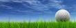 Leinwanddruck Bild - conceptual 3D golf ball on green grass over a blue sky