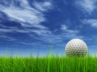 high resolution 3d white golf ball in green grass with sky