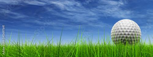 conceptual 3D golf ball on green grass over a blue sky - 13697641
