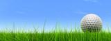 Fototapety conceptual 3D golf ball on green grass over a blue sky
