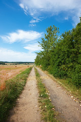 A photo of a dirt road in the countryside (Denmark)