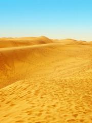 Desert area by the ocean