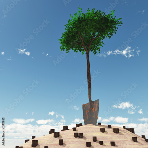 lonely tree growth from handle of spade