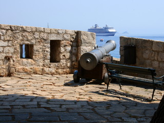 Cannon and cruise ship
