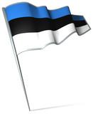 Flag pin - Estonia poster