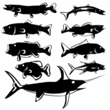 Various fish in vector silhouette