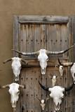 Longhorn skulls for sale at Santa Fe Craft Market poster