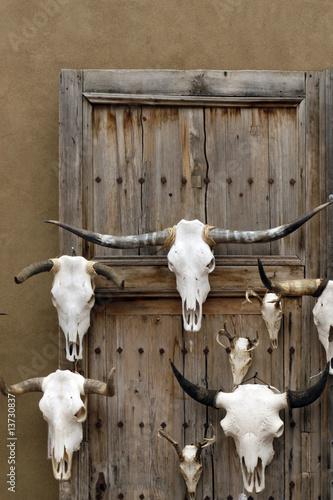 poster of Longhorn skulls for sale at Santa Fe Craft Market