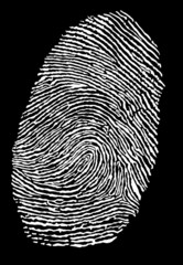 white fingerprint vector