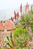 Rooftops of Eze village, French Riviera poster