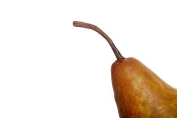 Macro of a pear stem
