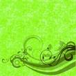 boucles et spirales sur fond vert anis