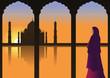 Woman in Traditional Sari Dress looking at Taj Mahal.