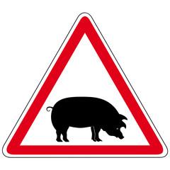 Achtung! - Schweinegrippe