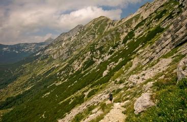 Hiker in alps