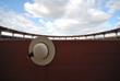 Detalle sombrero de picador, plaza del Descubrimiento.